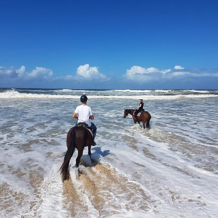 Ballina, Australia: We were allowed to walk the horses into the water whenever we pleased.