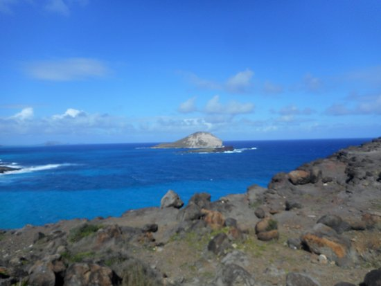 Makapu'u Point: Rocky coast