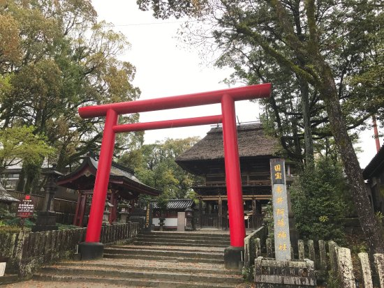 Рестораны Hitoyoshi
