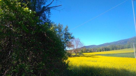 Massa Martana, Italia: Succede questo al piccolo Borgo del Giglio.....