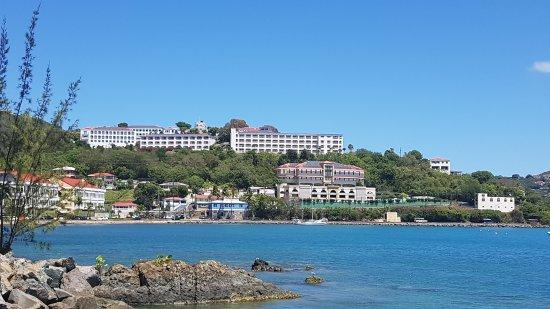 Virgin Island EcoTours - St. Thomas Tours