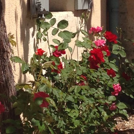 Montagrier, France: photo0.jpg