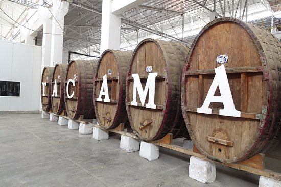 Tacama: Wine Tour