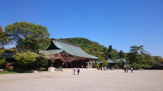 Kashihara, Japan: DSC_4876_large.jpg
