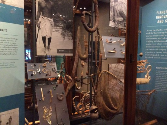 Bishop Museum : One of many of the exhibits, this dealing with fishing, note the fishing hooks