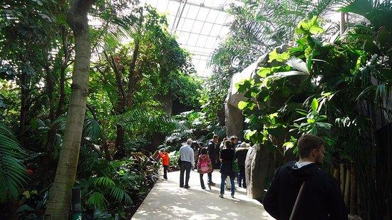 Parc Zoologique de Paris: La magnifique serre