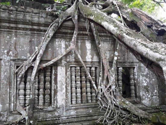 Provinz Siem Reap, Kambodscha: view