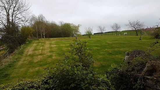 Brecon, UK: Gardens