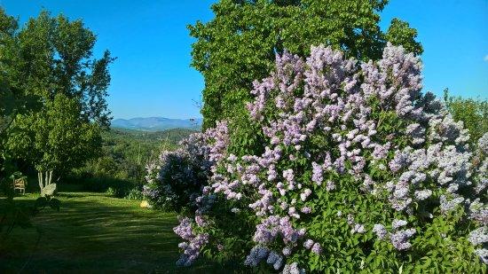 Simiane-la-Rotonde, ฝรั่งเศส: jardin de Chaloux