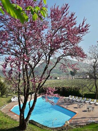 Soligo, Italy: Piscina all'aperto