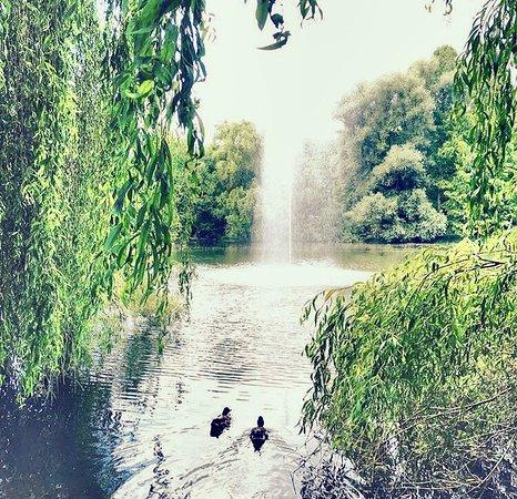 Herzogenriedpark: photo0.jpg