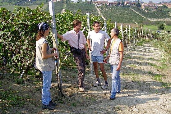 Govone, Italia: Passeggiata tra i Vigneti in questo B&B nelle Langhe.