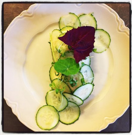 Nysted, เดนมาร์ก: Starter. Salmon Rilette with Cucumber