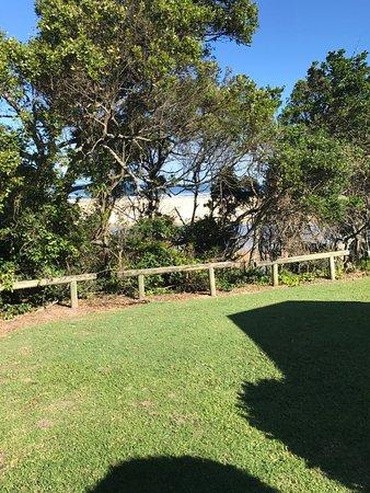 Sawtell, Australien: photo0.jpg