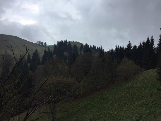 Trichiana, Italia: Sentiero del Monte Frontal