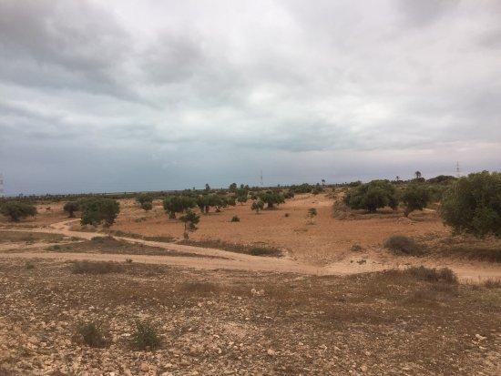 Мидун, Тунис: photo3.jpg