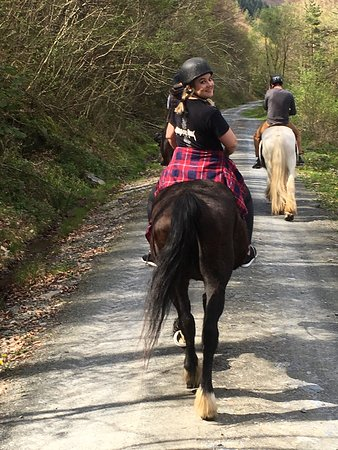 Penmachno, UK: First time horse riding.. absolutely great day out