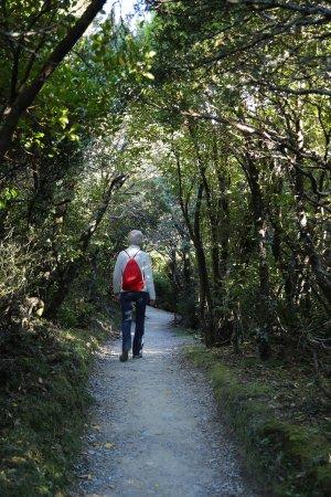 Aoraki Mount Cook National Park (Te Wahipounamu), نيوزيلندا: The hike takes you through a variety of terrain.