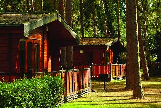 Entrance - Picture of Sandy Balls Holiday Village, Fordingbridge - Tripadvisor