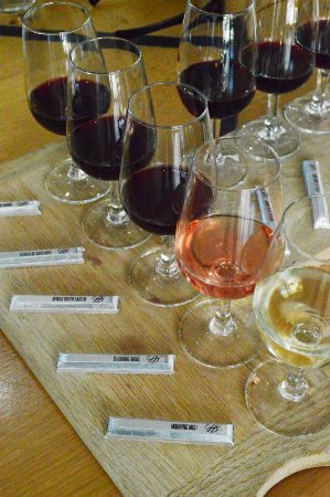 Durbanville, Afrika Selatan: There are 5 pairing which you taste from left to right