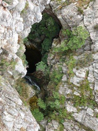 Elgin, แอฟริกาใต้: photo4.jpg