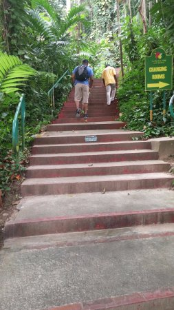 Saint Ann Parish, Jamaica: There are lots of stairs on this tour