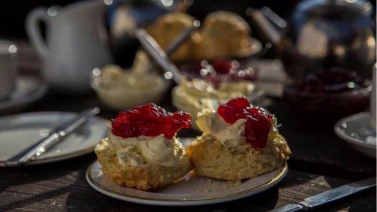 Drewsteignton, UK: Cream Tea