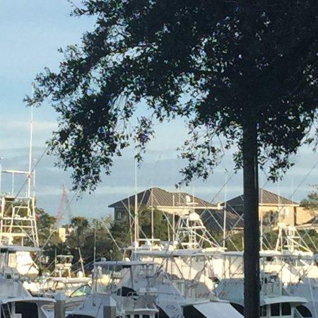 La Quinta Inn & Suites Charleston Riverview: photo0.jpg
