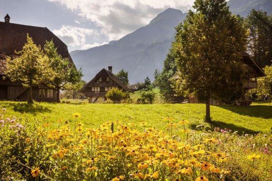 Ballenberg, Swiss Open-Air Museum