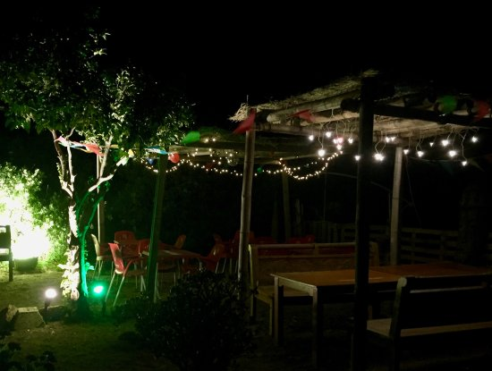 Jardin de noche picture of iguana bar restaurant for La jardin restaurant 2016