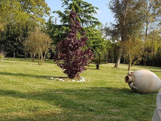 Conca della Campania, Italy: IMG-20170424-WA0003_large.jpg