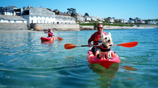 St Mawes, UK: Freddie, with his owners, in the April sunshine.