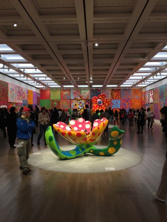 The National Art Center, Tokyo: photo0.jpg