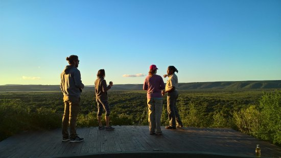 Amakhala Game Reserve, Sudáfrica: Sundowners with a view