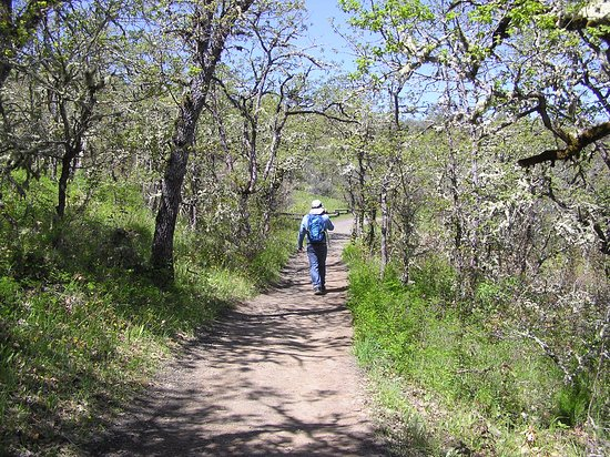 Medford, OR: trail through oak woodland on the way to upper table rock