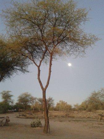 Omaruru, Namibia: IMG-20160426-WA0004_large.jpg