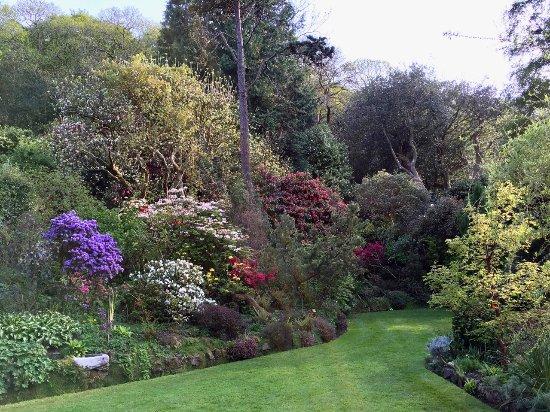 Porlock, UK: The main lawn