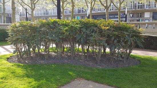 jardins picture of jardins de l 39 hotel de ville le havre tripadvisor. Black Bedroom Furniture Sets. Home Design Ideas