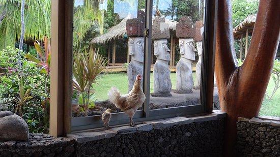 Hotel Vai Moana Photo