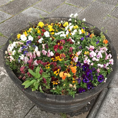 Edogawa, Japan: Flowers by the front entrance walkway