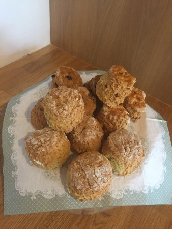 Ryan's River Lodge: Home baking