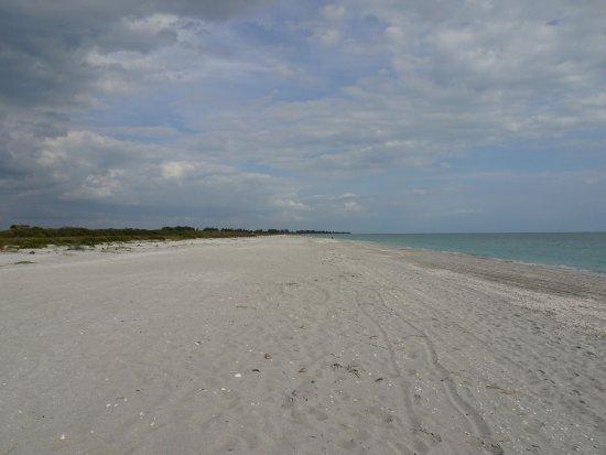 Fort Myers Beach : photo1.jpg