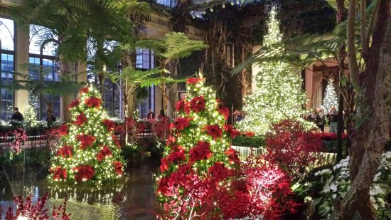 Kennett Square, Pensylwania: Inside the Conservatory at Christmas
