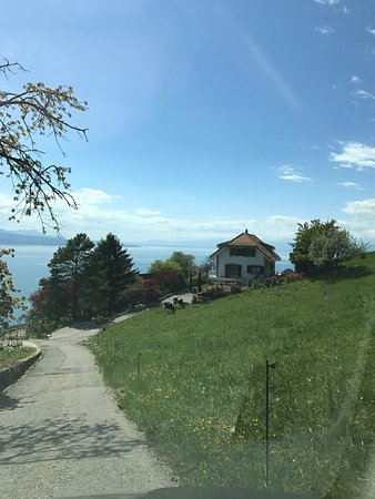 Grandvaux, Swiss: photo0.jpg
