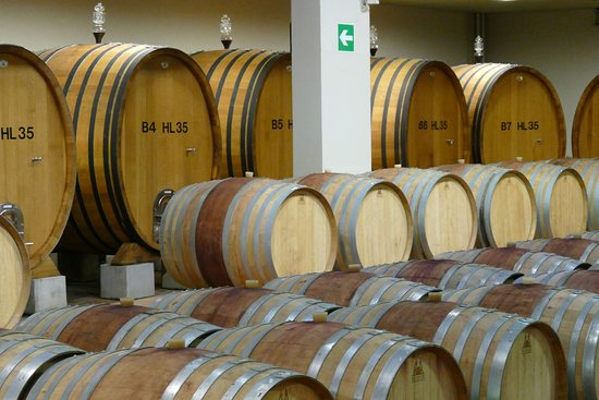 Montepulciano, Italy: Weinkeller