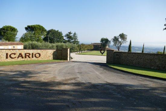 Montepulciano, Italy: Einfahrt Weingut