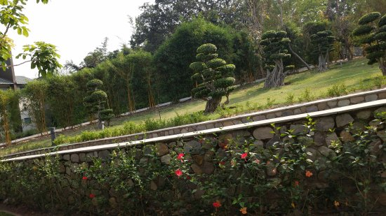 Dhikuli, India: Awesome place