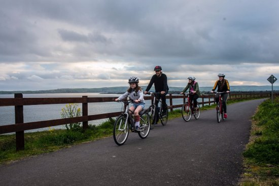 Dungarvan, Ireland: Selection of bikes available to rent