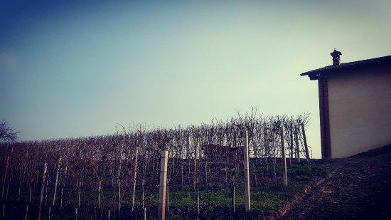 Monta, Italia: Alba