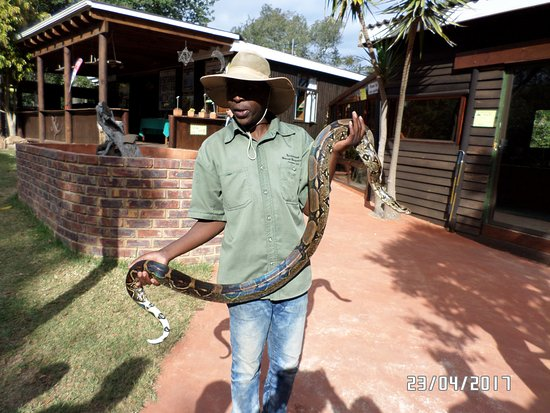 The Crags, South Africa: Ken with the constrictor snake which we were able to hold
